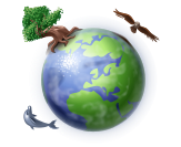 curriculum-globe